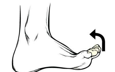 Toe Flexes